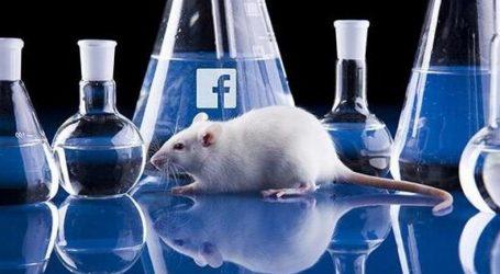 Social Network! Programmazione Riuscita !