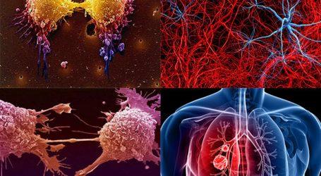 Terapie contro il Cancro  Il Caso Pantellini