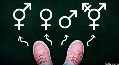 Piccoli Frankenstein: tutto quello che non sapete sulla transizione di genere