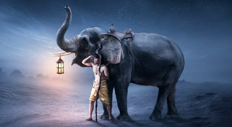 L'Inosservato Elefante
