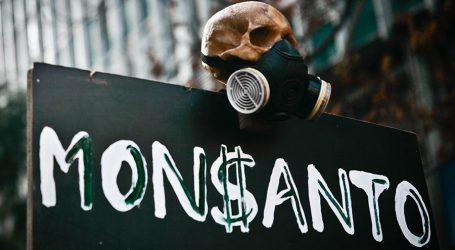 India: Il Cotone Ogm Monsanto Causa il Suicidio dei Contadini