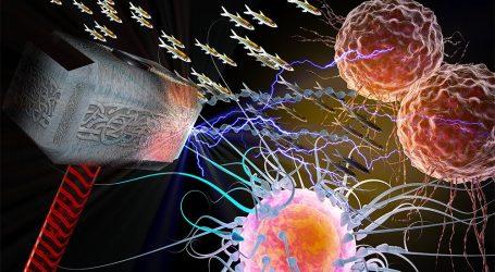 Il Protocollo Budwig Soppresso, Per la Cura del Cancro