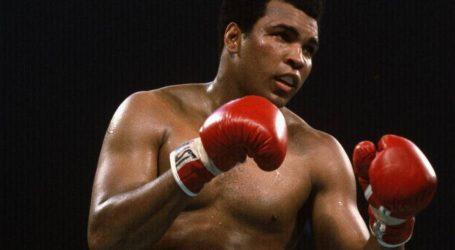 Merano Thunders Boxing Club L'arte della Boxe