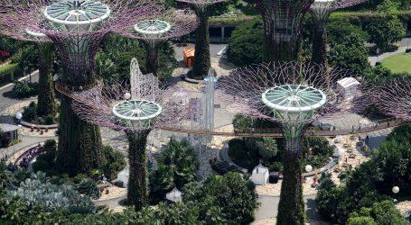 Mentre noi Pensiamo al Virus Singapore Pianterà' un Milione di Alberi entro il 2030