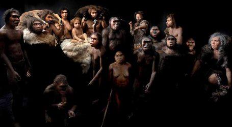 Covid: I 90 Giorni di Follia Collettiva Dell'Homo Sapiens