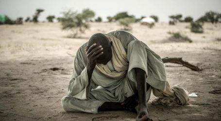 Il Rapporto delle Nazioni Unite Mostra che 768 milioni di Persone nel Mondo sono Denutrite