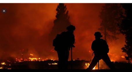 Torturare la Legge e la Ragione per Liberare il pianeta dai Negazionisti del Cambiamento Climatico